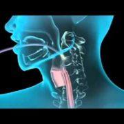 endoszkópos szakorvos